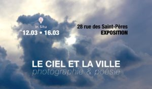 7th Edition of the In Situ Photo Contest : Time to vote !